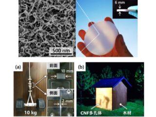 東大,強度・光透過性等を備えた多孔質材料を開発