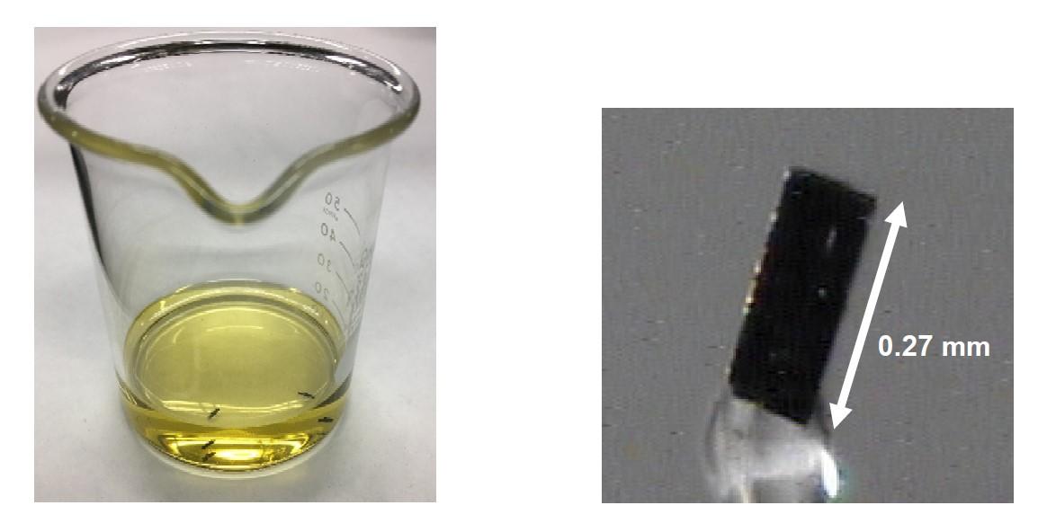 結晶成長中のビーカー(左)と顕微鏡で見た単結晶(右)(ビーカーの底に沈んでいる黒い物体(1つ1つ)が結晶)(提供:内藤氏)