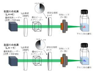 千葉大,キラル渦光照射で有機化合物を不斉増幅