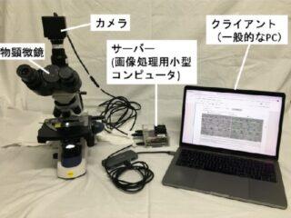 横市大ら,気孔を認識するAI顕微鏡システムを開発