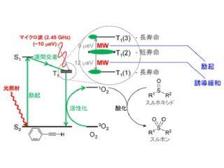 理研,光とマイクロ波による化学合成反応系を開発