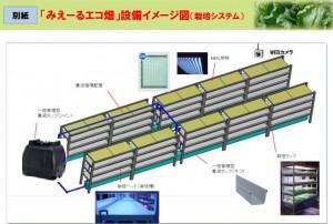 NTT西,野菜工場によるレンタル農園事業を開始