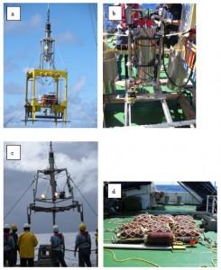 海洋研究開発機構、マリアナ海溝海底における、 活発な有機物の供給と微生物活性を発見