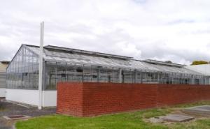 三菱樹脂アグリドリームら,オーストラリアで太陽光利用型植物工場の実証試験を開始