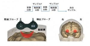 """長崎大ら、赤ちゃんの脳はおむつ素材の違いを区別し""""気持ちいい""""触感を実感することを実証"""