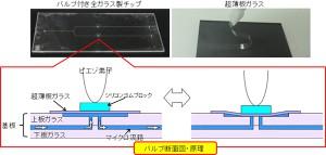 理研、超薄板ガラスのバルブを作製