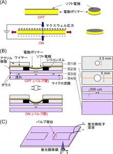理研、マイクロ流体チップに使う小型電動バルブを開発