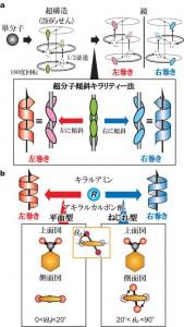 阪大、2回らせんの右巻き・左巻きの選択機構の解明とその制御に成功