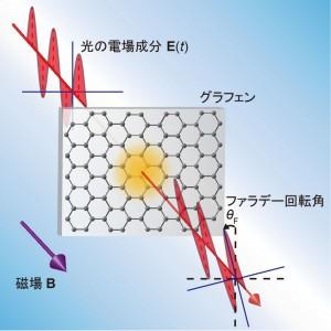 東大、テラヘルツ波を用いてグラフェンの光学量子ホール効果の観測に世界で初めて成功