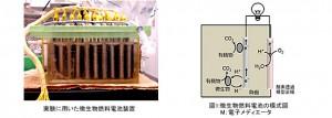 東京薬科大,微生物燃料電池の廃水処理性能向上技術を開発
