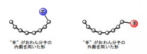 分子研,おわんの形をした分子の内側と外側が生み出す違いを解明