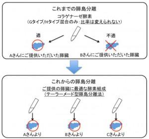 東北大、膵島移植においてコラゲナーゼH が重要であると発表