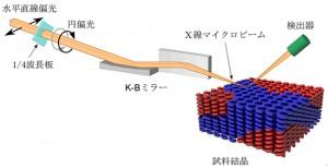 理研など、放射光でキラル物質の3次元透視を実現