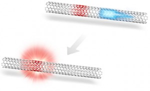 京大、カーボンナノチューブを効率良く光らせる新たなメカニズムを発見