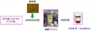 産総研、酵母を利用して非可食バイオマスから高機能界面活性剤を量産