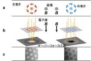 理研ほか、電子スピンの渦「スキルミオン」のサイズと渦の向きを自在に制御できる可能性を発見