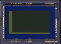 キヤノン,35mmフルサイズCMOSセンサで体長数ミリのホタルの高感度動画撮影に成功