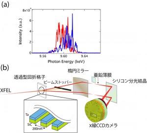 理研ら,X線自由電子レーザパルスの特性を生かした高効率X線吸収分光法を開発