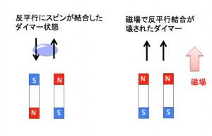 東大、二次元磁性体の新たな量子状態を極限強磁場において観測