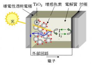 NIMS、色素増感太陽電池の色素吸着構造を分子レベルで解明