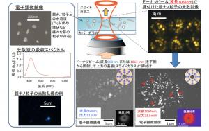 大阪府大と阪大、ドーナツビームと揺らぎの効果でナノ粒子の高均一化と配列に成功