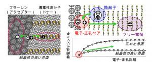 東北大、有機薄膜太陽電池の電荷損失を防ぐ要因を理論的に解明