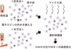 阪大、極低温を用いずNMR信号強度を飛躍的に増大させる手法を開発