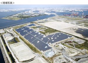 大阪市夢洲で官民協働の企業参加型環境貢献事業『大阪ひかりの森プロジェクト』が本格開始