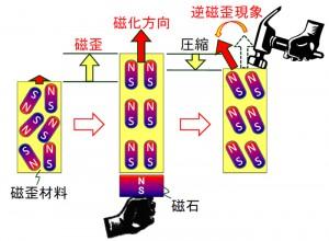 東北大ら,振動発電やワイヤレスセンサに適した新磁歪材料を共同開発