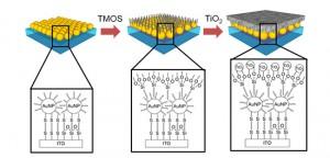 NIMS、ナノテクにより光触媒の性能を大幅に向上