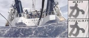海洋研究開発機構,次世代カメラシステムによる超深海映像の撮影に成功