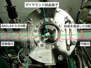 理研とJASRI,円偏光したX線自由電子レーザの生成に成功
