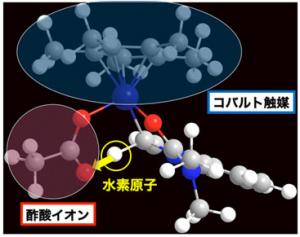 東大と星薬科大,ロジウム触媒の性能を超えるコバルト触媒の開発に成功