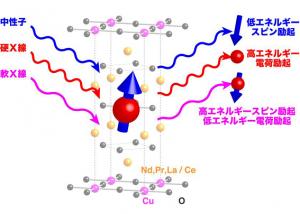 東北大や原研など,量子ビームの合わせ技で銅酸化物高温超伝導体における電子の動きを捉えることに成功