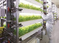 三菱化学,ローソンファーム秋田に植物工場を販売