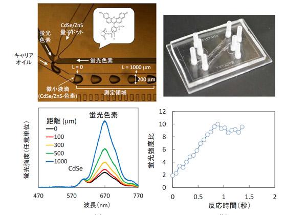 埼玉大ら,蛍光スペクトルを利用しマイクロ流路中の化学反応のリアルタイム評価に成功
