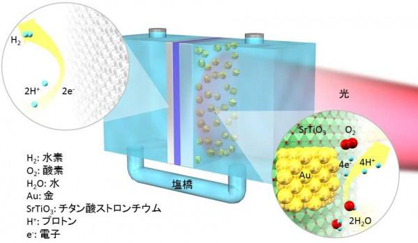 北大ら,可視・近赤外光の利用と発生した水素・酸素の分離が同時に可能な人工光合成システムを開発