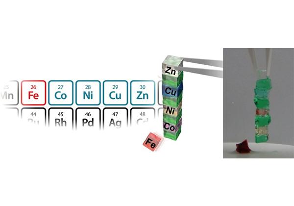 阪大,分子認識に基づいて選択的に接着する機能性ゲルを開発