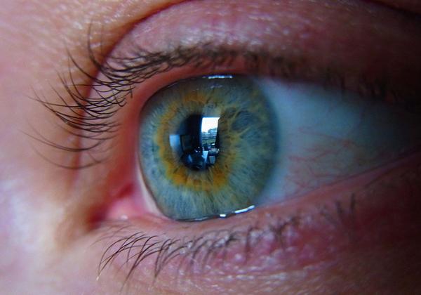 ニデックら,人工視覚システムの公募に採択